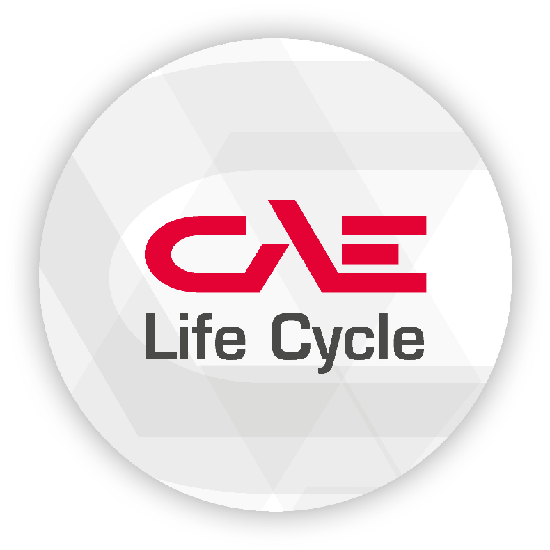 CAE Life Cycle