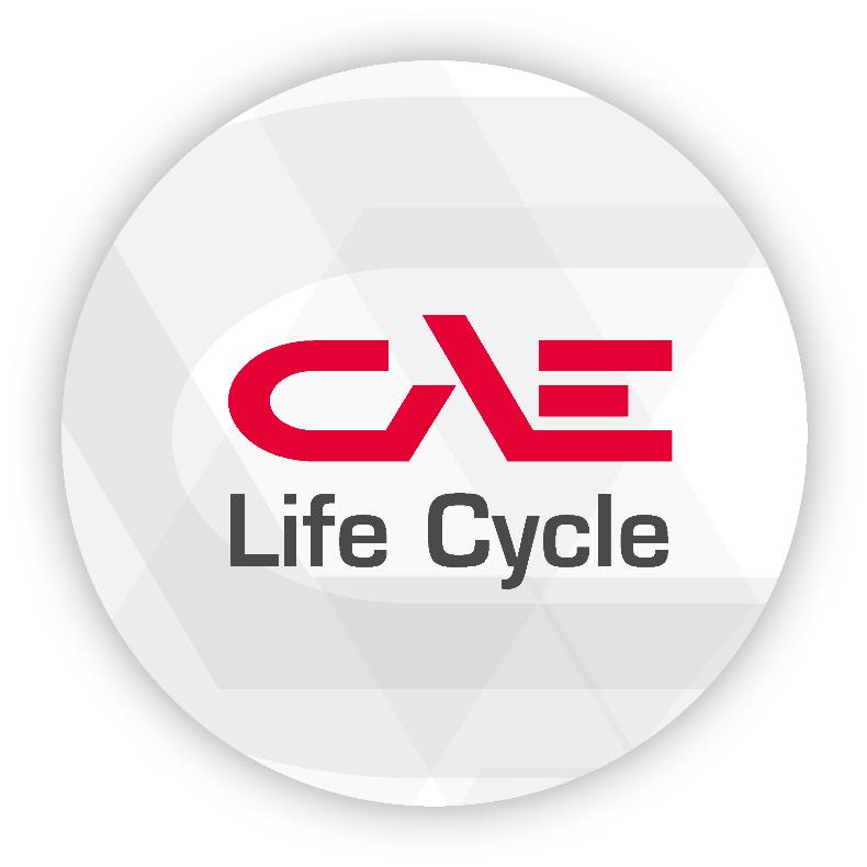 CAE Life Cycle